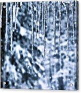 Iciles And Snow Acrylic Print