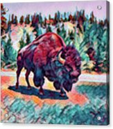 Icon Of The West Acrylic Print