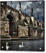 Iconic Bridge In Prague Acrylic Print