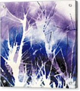 Icy Forest Acrylic Print