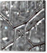 Icy Glitters Acrylic Print