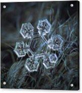 Icy Jewel Acrylic Print by Alexey Kljatov
