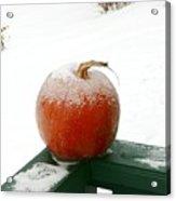 Icy Pumpkin Acrylic Print