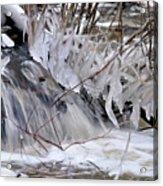 Icy Spring Acrylic Print