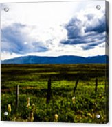 Idaho Field Acrylic Print