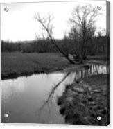 Idyllic Creek - Black And White Acrylic Print