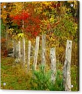 If I Could Paint No 1 - New England Fall Fence Acrylic Print