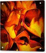 If Van Gogh Painted Calla Lilies Acrylic Print