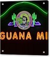 Iguana Mia Acrylic Print
