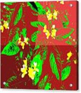 Ikebana Acrylic Print by Eikoni Images