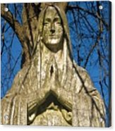 I'll Just Blend In - Hail Mary  Acrylic Print