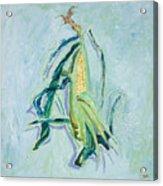 Illinois Corn Acrylic Print
