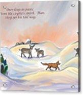 Illustrated Haiku 3 - Age 17 Acrylic Print