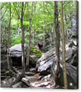 Image Included In Queen The Novel - Rocks At Smugglers Notch Acrylic Print