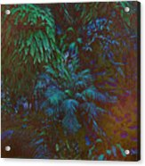 Imagination Leafing Out Acrylic Print