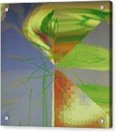Img0175 Acrylic Print