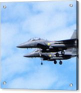 Img_9906 - Jet Acrylic Print