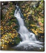 Imp Trail Cascade Acrylic Print