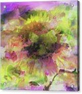 Impression Sunflower Acrylic Print