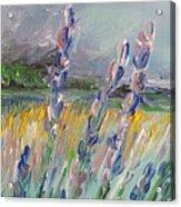 Impressionism Fantasy Field Acrylic Print