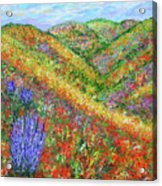Impressionism- Flowers- Dreaming Of Spring Acrylic Print