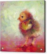 Impressionist Chick Acrylic Print by Talya Johnson