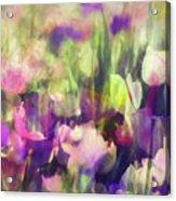 Impressionist Floral Xxxvi Acrylic Print