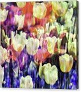 Impressionist Floral Xxxvii Acrylic Print
