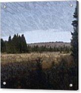 Impressionist Meadow Acrylic Print