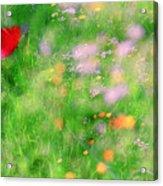 Impressionistic Blossom 5 At Britain Park Acrylic Print