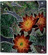 Impressionistic Lilies Acrylic Print