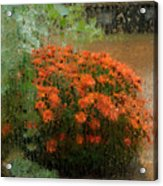 Impressionistic Mums Acrylic Print