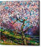 Impressionistic Spring Blossoms Trees Landscape Painting Svetlana Novikova Acrylic Print