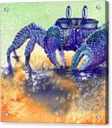 In A Blue Mood Acrylic Print
