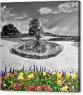in Black and White Acrylic Print