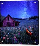 In Dreams Acrylic Print