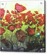 Fields Of Poppies Acrylic Print