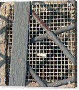 In Grates Acrylic Print