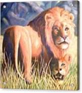 In Lions Time Acrylic Print