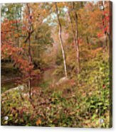 In Love With Autumn Acrylic Print