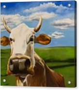 In Pasture Acrylic Print