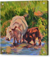 In The Creek Acrylic Print