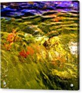 In The Flow 2 Acrylic Print