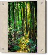 In The Forest With Words Acrylic Print