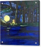 In The Moonlight Acrylic Print