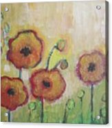 Poppies At Dusk Acrylic Print