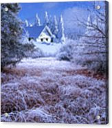 In The Snowy Forest Acrylic Print