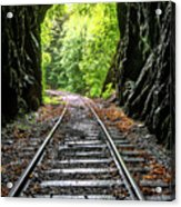 In The Tunnel Acrylic Print