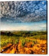 In The Vineyard Winery Landscape Acrylic Print