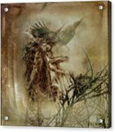 In The Wildwood Acrylic Print